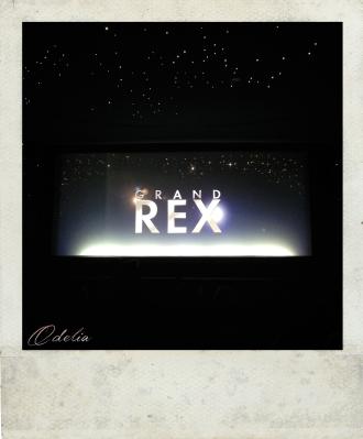 rex-2